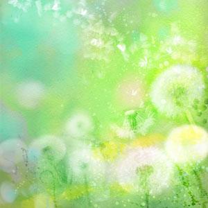 Pollen- & huisstofmijtallergie